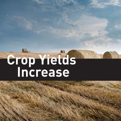 crop-yields