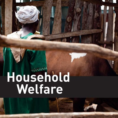 household-welfare